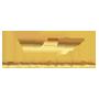 Голден Нет (Golden Net)