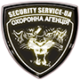 logo-security-ua