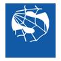 logo-spider_net