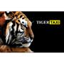 Такси Тайгер (Tiger) (Киев) - оплата через интернет